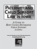 Paternity and Child Support Law booklet cover