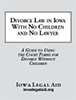 Divorce Law with No Children booklet cover